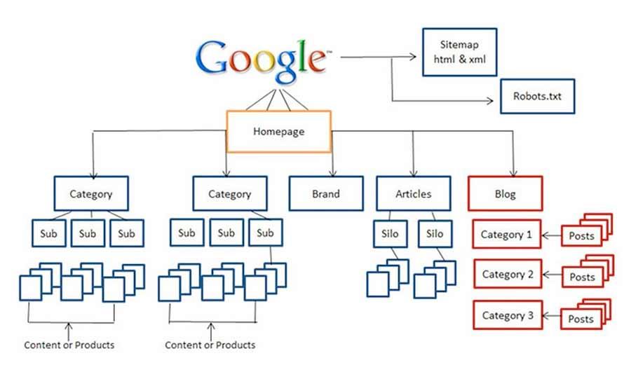 cấu trúc 1 trang web